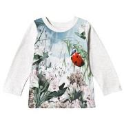 Molo Eline Tee Ladybird 74 cm